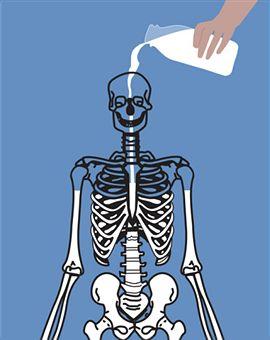 manfaat susu kambing untuk kesehatan tulang